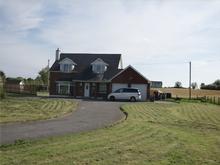 Roebuck, Mardon House, Mountnugent, Co Cavan