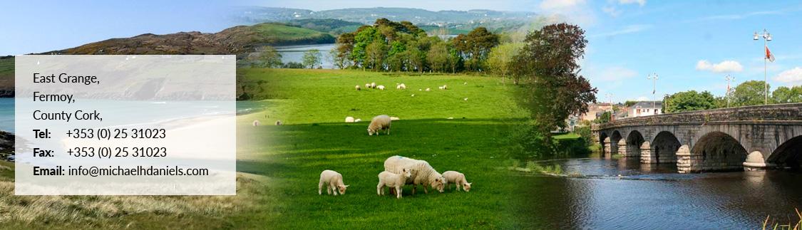 East Grange, Fermoy, County Cork, Ireland. Tel + 353 (0) 25 31023 Fax +353 (0) 25 31023 Email mhdanielsandco@eircom.net